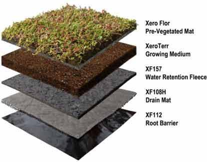 روش ساخت بام سبز, ساخت پشت بام سبز