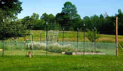 فنس کشیدن دور باغ
