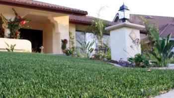 چمن مصنوعی برای حیاط خانه